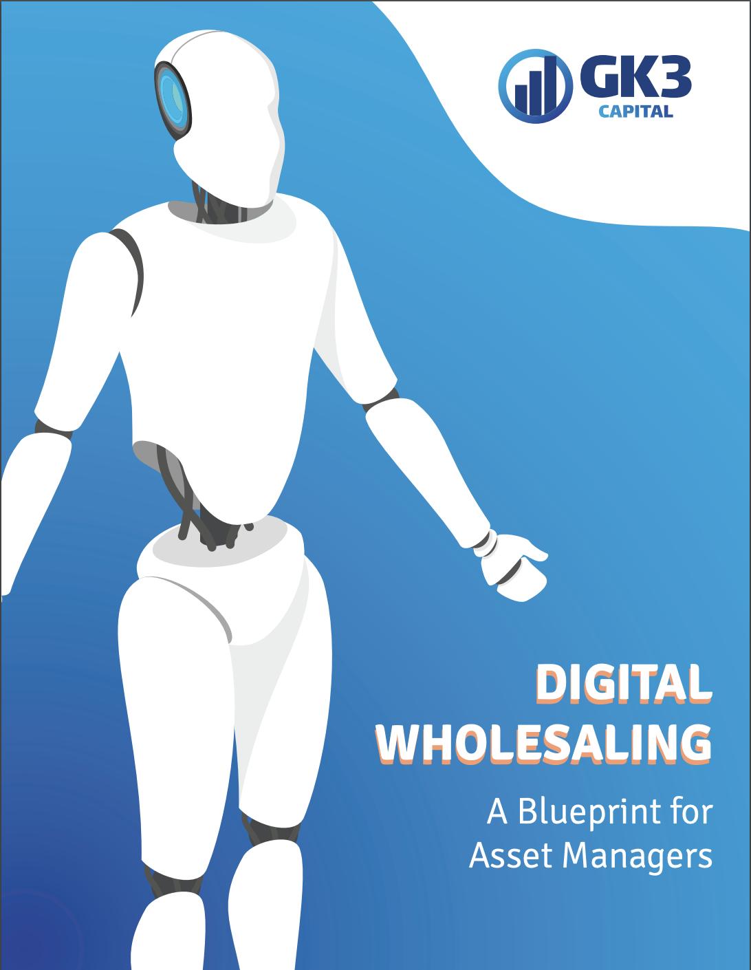 COVER - Ebook Digital Wholesaling
